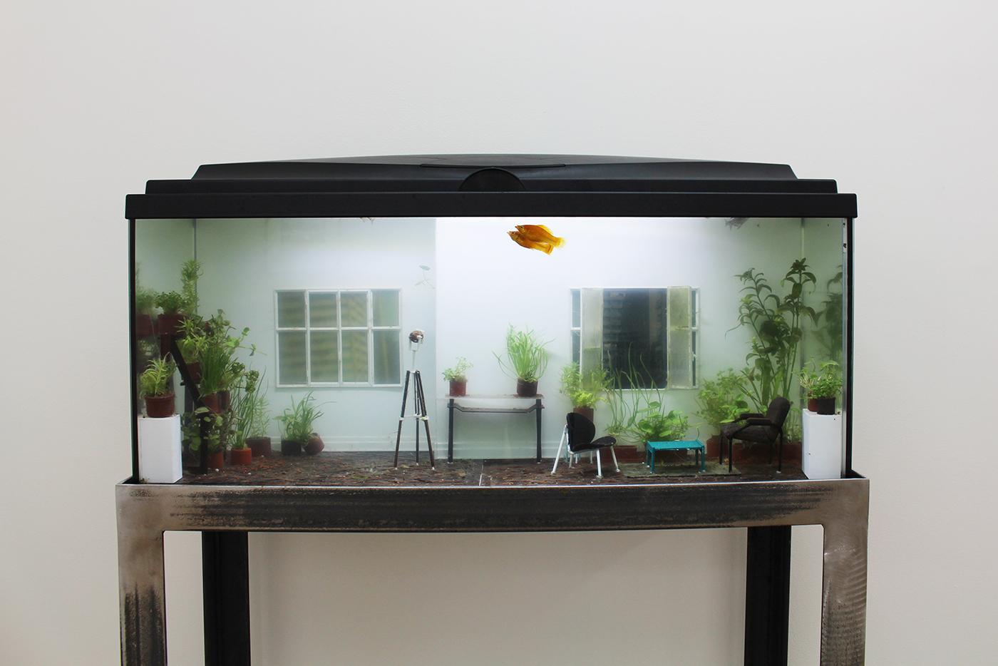 Rodrigo Arteaga, Öekologie, 2016, Aquarium with live fishes, live plants and miniature elements, 80 x 30 x 40