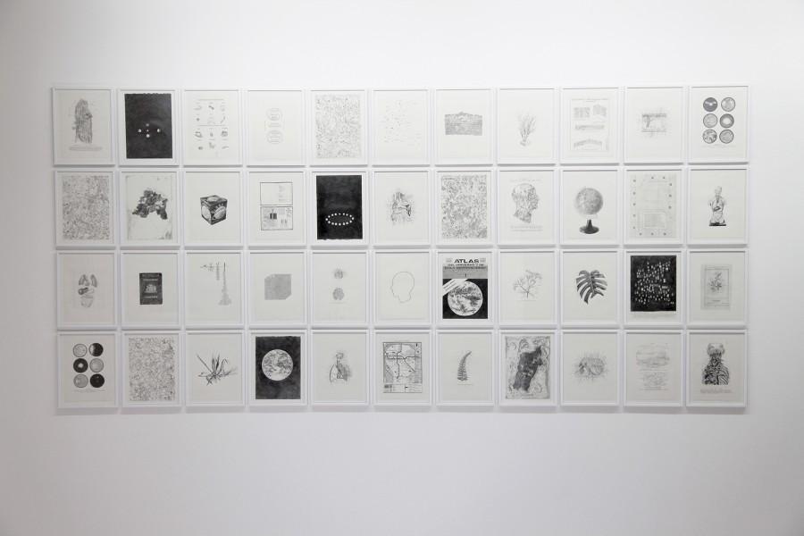 Rodrigo Arteaga Encyclopedic drawings, 2015 Graphite on paper, 25 x 18 cm each