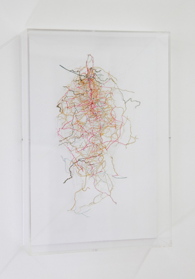 Rodrigo Arteaga Ramifications, 2015 Cut-out maps, Variable dimensions