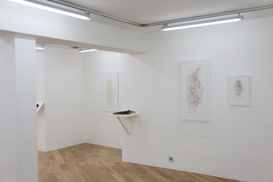 Instruction in a circle, Rodrigo Arteaga, exhibition view, May 2015