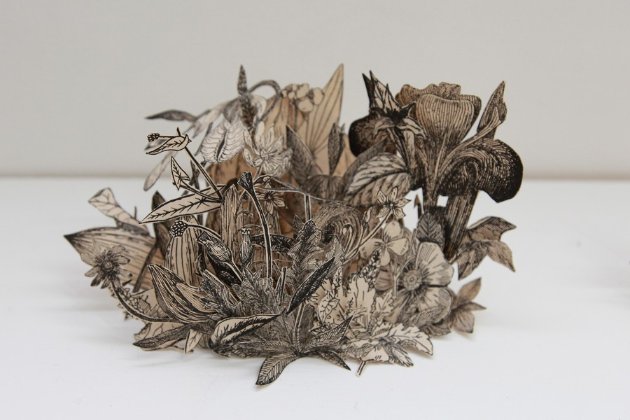 Rodrigo Arteaga Herbarium of botanical studies, 2015 Cut-out botanical books, Variable dimensions