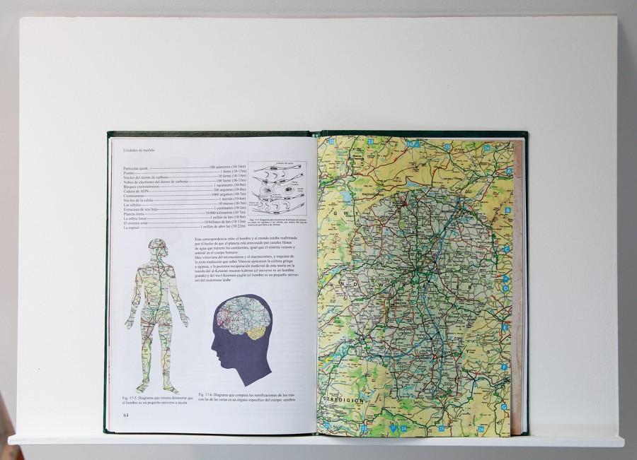 Rodrigo Arteaga Biología, 2014 Artist book, 17,5 x 25,5 cm