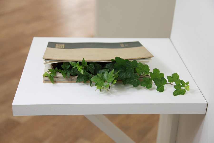 Rodrigo Arteaga The Earth, 2014 Artist book, plant 21,5 x 28 cm