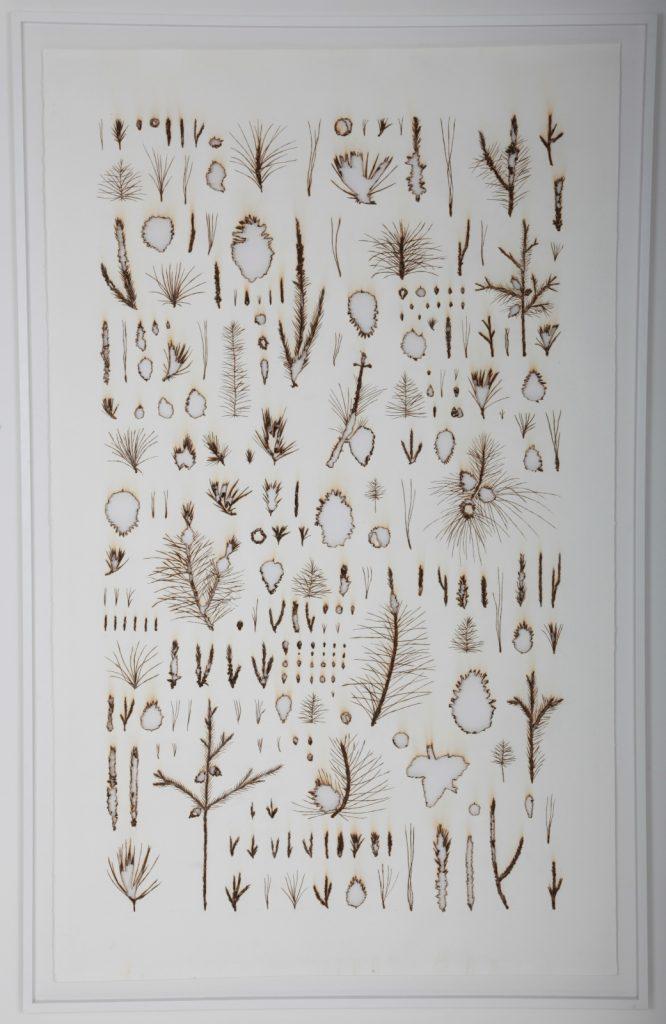 """Rodrigo Arteaga, """"Monocultures #2"""", 2019, Papier Brulé Manuellement, 135 x 210 cm."""