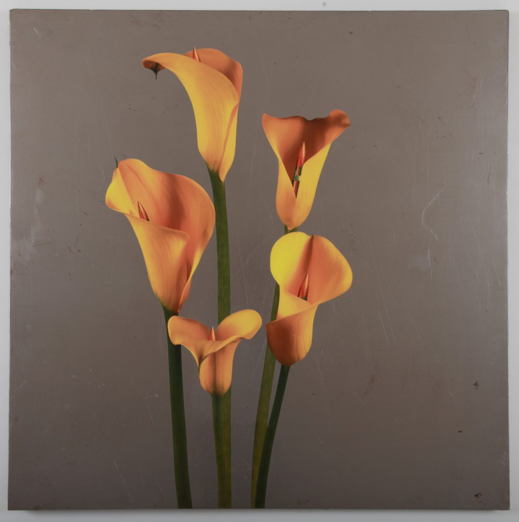 "Pep Marchegiani, ""Giallo, Series : Opus Mundi"", 2017-2020, Impression Sur Fer, 100 x 100 cm."