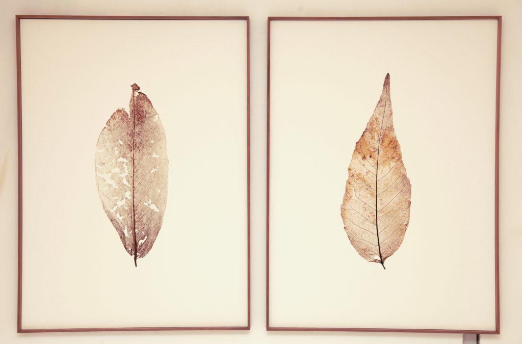 """Toya Legido, """"El Alma De Las Hojas"""", 2019, Jet D'Encre Sur papier Coton, 120 x 90 cm (x2)."""