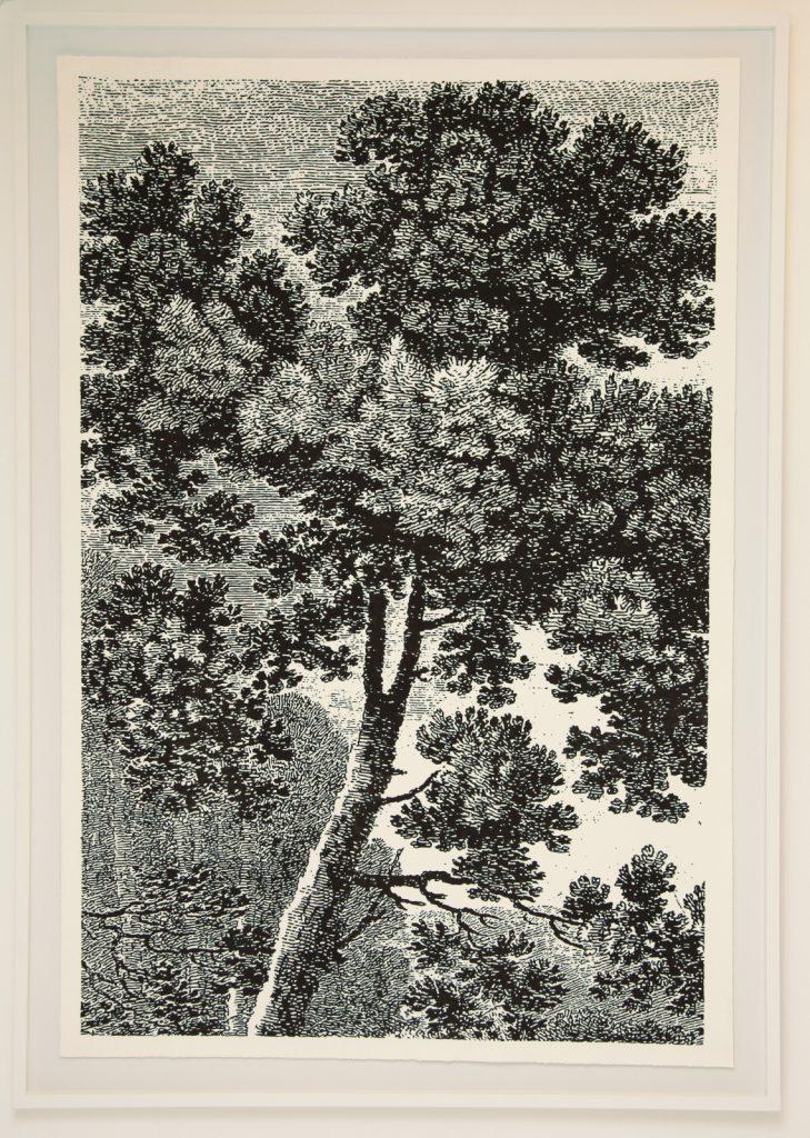 """Thomas Andrea Barbey, """"Drawn After Nature"""", 2020, Gouache Sur Papier, 165 x 116 cm."""