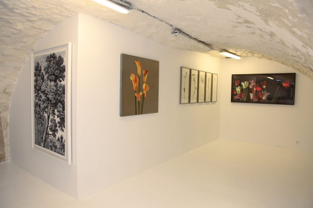 Exhibition View - Jardines Imaginarios - September 2020